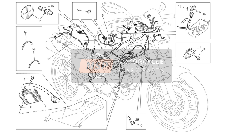 Ducati MONSTER 796 ABS USA 2013 WIRING HARNESS  for a 2013 Ducati MONSTER 796 ABS USA