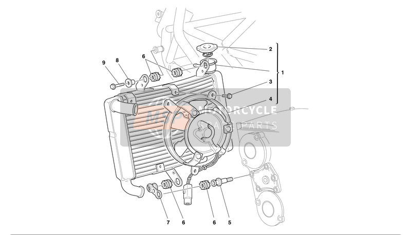 WATER RADIATOR ASSY