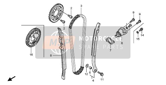 CAM CHAIN & TENSIONER