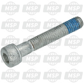 018538, Hex Houder Screw M5X30, Piaggio