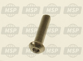 654507, Hex Houder Screw, Piaggio