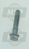 828863, SCREW W/FLANGE, Aprilia