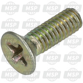 AP8213400, PUMP COVER SCREW, Aprilia