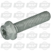 0025060256, HH collar screw M6x25 TX30, KTM