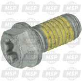 0025080166S, HH collar screw M8x16 TX40 SL, KTM