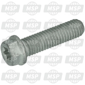 0025080306, HH collar screw M8x30, KTM